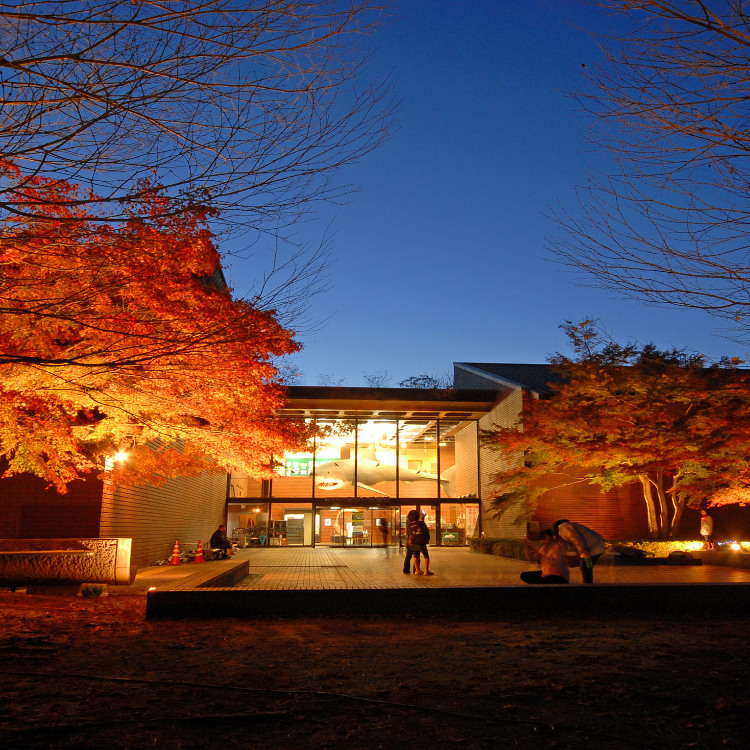 埼玉県立自然の博物館