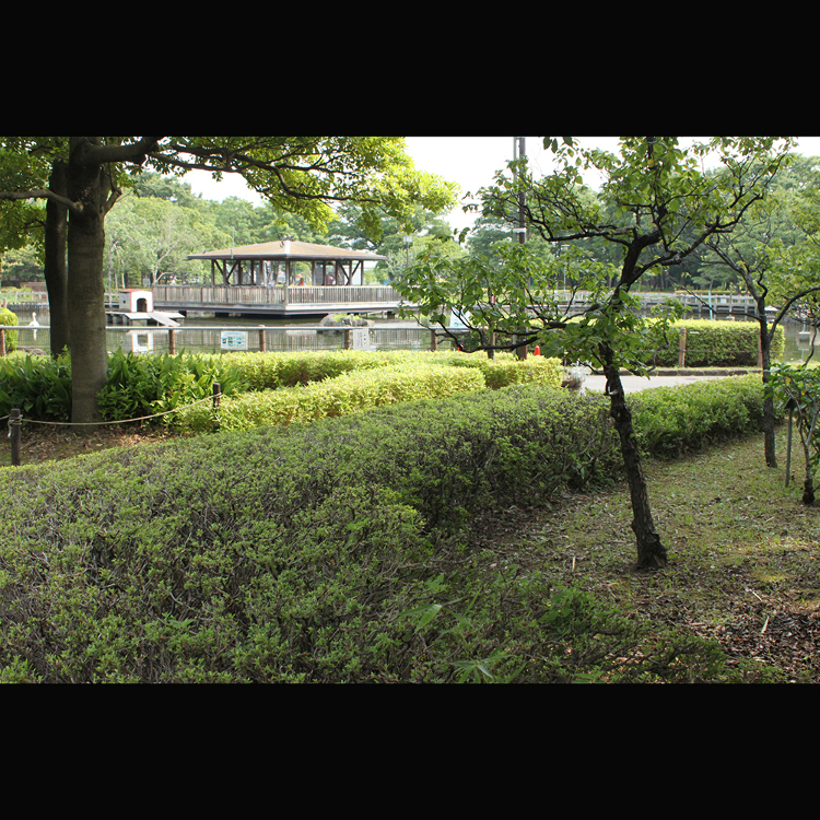 아라카와 자연공원