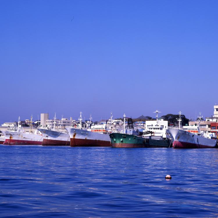 Misaki Harbor