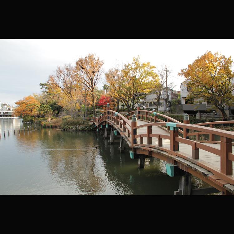 센조쿠 연못