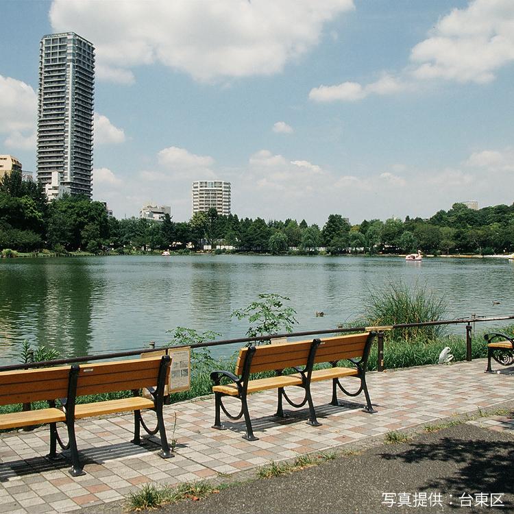 시노바즈 연못