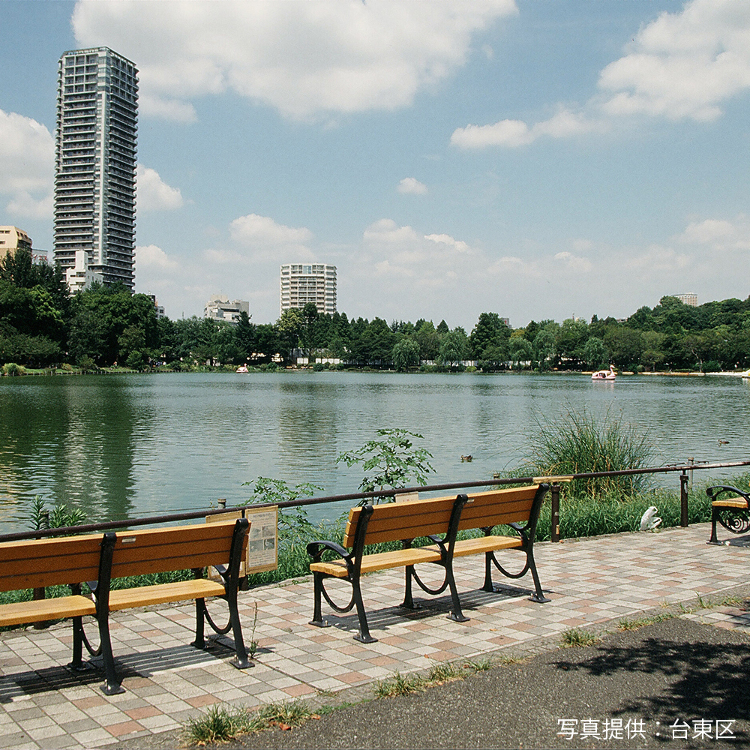 Shinobazu Pond