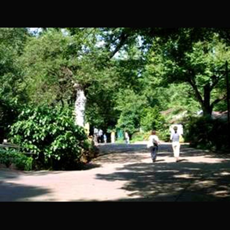 井之头恩赐公园