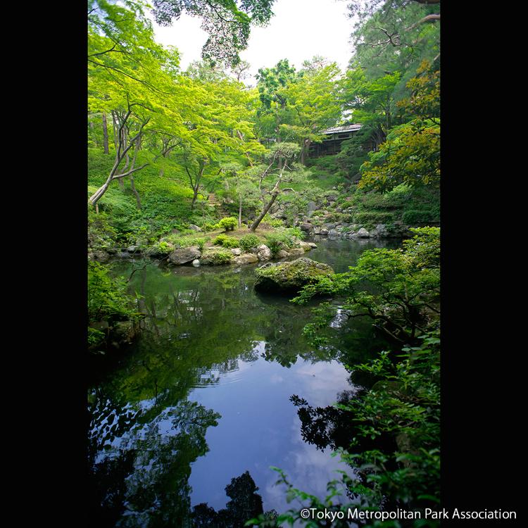 도노가야토 정원