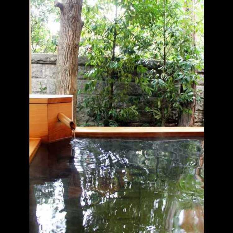 前野原温泉 さやの湯処