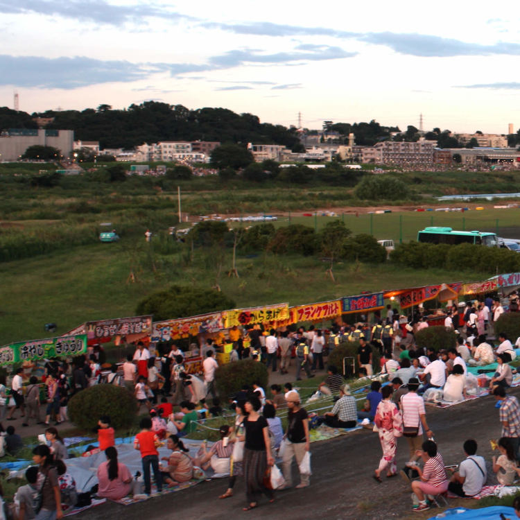 Arakawa Todabashi green area