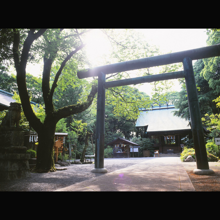 Hotoku Ninomiya Shrine
