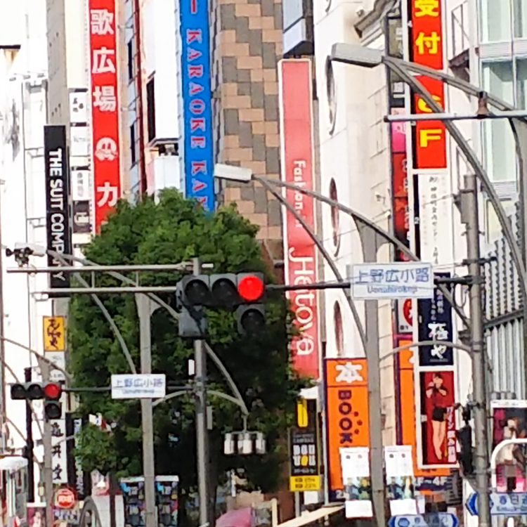 Ueno Chuo Dori street (Ueno Chuo Dori Shop Association)