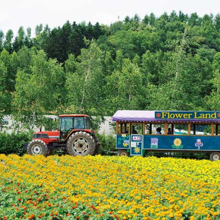 Flower Land Kamifurano
