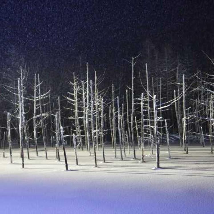비에이시로가네 푸른 연못-아오이이케