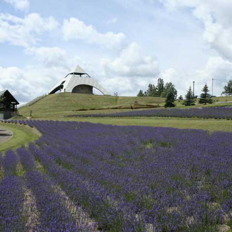 Hokusei-no-oka hills Observatory park
