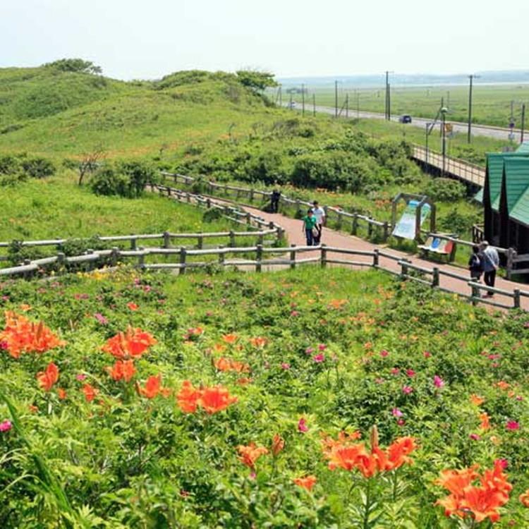 Abashiri Quasi-National Park Koshimizu Genseikaen Wildflower Field
