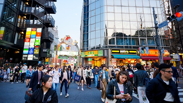 도쿄 하라주쿠, 오모테산도의 여행중 볼거리! 일본 잡화의 트렌드를 느껴보자!