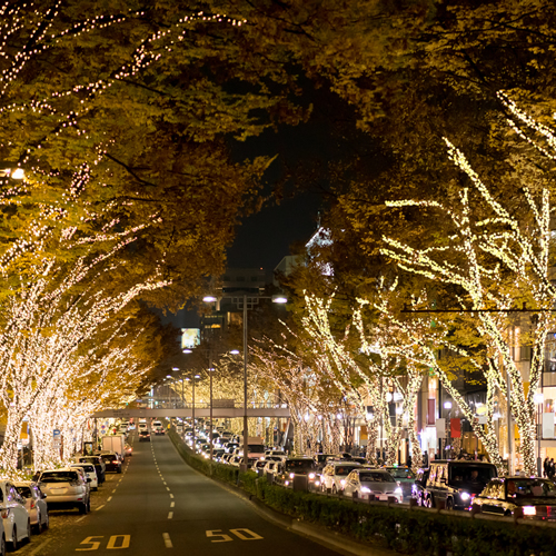 Illumination of Omotesando
