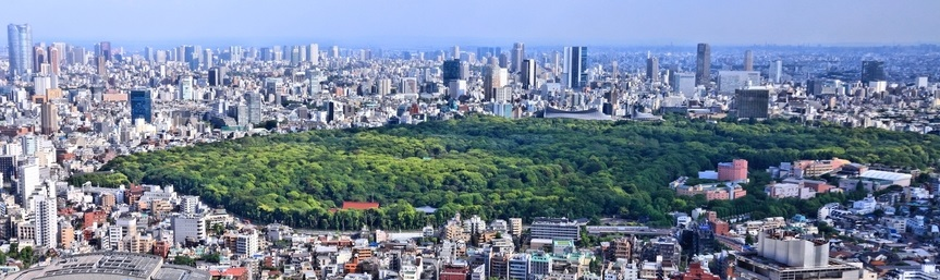 aerial view of Shinjuku and Shibuya districts with famous Yoyogi Park