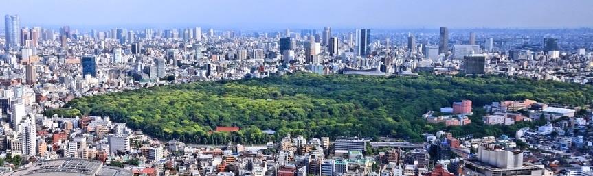 新宿和澀谷區鳥瞰,著名的代代木公園盡收眼底