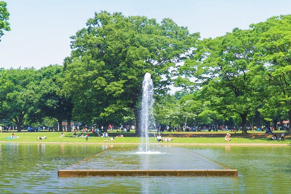 Fountain in Yoyogi Park