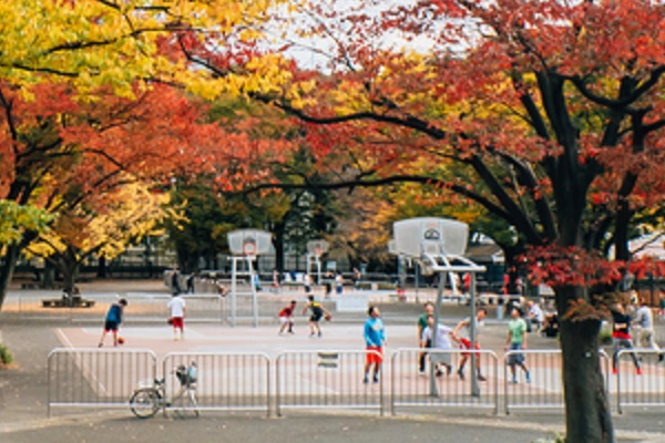 Basketball field to Yoyogi park
